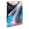 Innovera® Glossy Photo Paper   www.SelectOfficeProducts.com