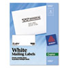AVE5352 Self-Adhesive Shipping Labels for Copiers, 2 x 4-1/4, White, 1000/Box AVE 5352