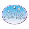 Charles Leonard Safety Pins