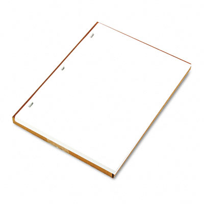 Ledger Sheets for Corporation & Minute Book, White, 11 x 8-1/2, 100 Sheets