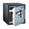 Sentry® Safe Fire-Safe® 1.2 Cu. Ft. Capacity Electronic Safe | www.SelectOfficeProducts.com