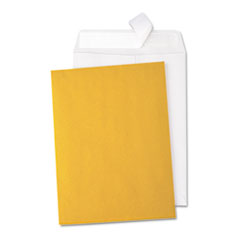 Universal® Peel Seal Strip Catalog Envelope