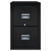 Patriot Insulated 2-Drawer Fire File, 20-3/4w x 31-5/8d x 27-3/4h, Black