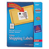Shipping Labels with TrueBlock Technology, 3-1/3 x 4, White, 600/Box