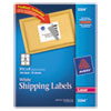 Avery Shipping Labels w/Ultrahold Ad & TrueBlock, Laser, 3 1/3 x 4, White, 150/Pack