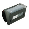 Four Inch Expansion File, 13 Pockets, Poly, Letter, Black