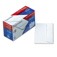 Grip-Seal Security Tint Business Envelopes,Side Seam, #6-3/4,White Wove, 55/Box