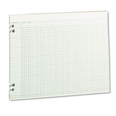 Wilson Jones Accounting Sheets, 24 Columns, 11 x 14, 100 Loose Sheets/Pack, Green