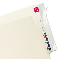 Protector, End Tab Folder, 8x2, Clear, 100/PK