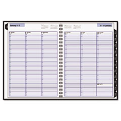 DayMinder Recycled Weekly Appointment Book, Black, 8