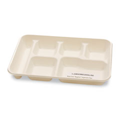 NatureHouse Sugarcane-Fiber Food Trays, 6-Comp, White, 125/Pack, 2 Packs/Carton