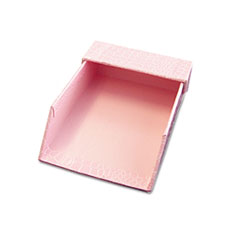 Aurora Products ProFormance Crocodile Memo Tray for 4 x 6 Notes, Pink