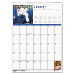 House of Doolittle Kittens Monthly Wall Calendar, 12 x 16-1/2, 2013