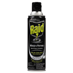 Raid Wasp & Hornet Killer, 14-oz. Aerosol Can