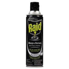 Raid Wasp & Hornet Killer, 14oz Aerosol