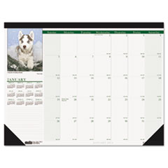 House of Doolittle Puppies Photographic Monthly Desk Pad Calendar, 22 x 17, 2014