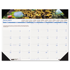 House of Doolittle Sea Life Photographic Monthly Desk Pad Calendar, 18-1/2 x 13, 2014