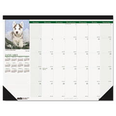 House of Doolittle Puppies Photographic Monthly Desk Pad Calendar, 18-1/2 x 13, 2015