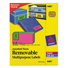 Avery Removable Self-Adhesive Multipurpose Labels, 2 x 4, Assorted Neon, 120/Pack