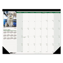 House of Doolittle Puppies Photographic Monthly Desk Pad Calendar, 22 x 17, 2015
