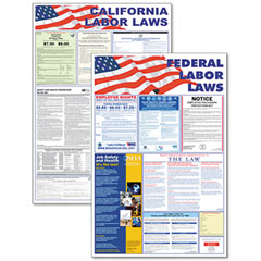 Advantus 83905 State/Federal Labor Lawith Legally Required Multi-Colored Poster, 24 X 30