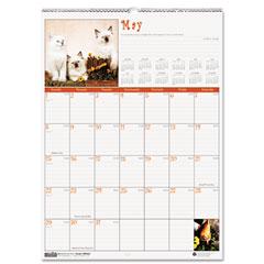 House Of Doolittle 3661 Kittens Monthly Wall Calendar, 12 X 12, 2012