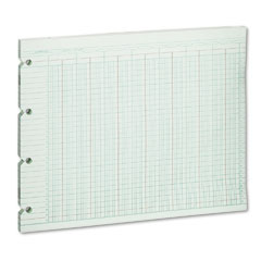 Wilson jones - accounting sheets, 24 column, 9-1/4 x 11-7/8, 100 loose sheets/pack, green, sold as 1 pk