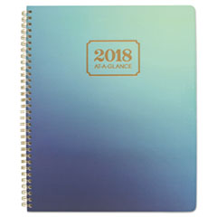 AT-A-GLANCE(R) Aurora Day Weekly/Monthly Planners