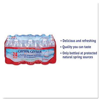 Alpine Spring Water, 16.9 oz Bottle, 24/Case