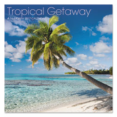 AAG LML71610 AT-A-GLANCE Landmark Tropical Getaway Wall Calendar AAGLML71610