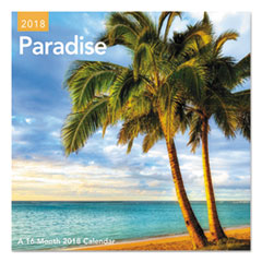 AAG DDMN45 AT-A-GLANCE Day Dream Paradise Mini Wall Calendar AAGDDMN45